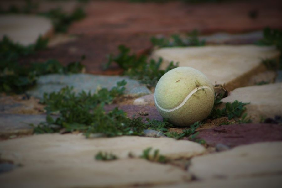 A tennis ball on the ground