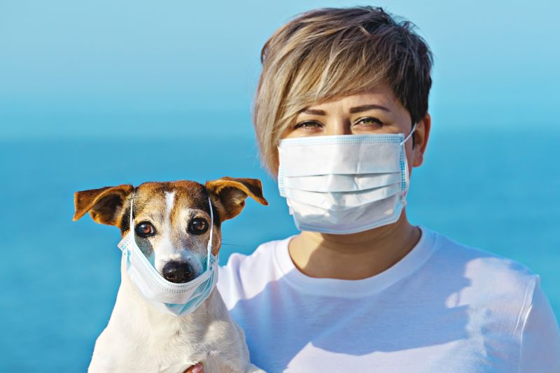 A dog and a human wear masks, demonstrating the importance of protecting against zoonotic diseases.